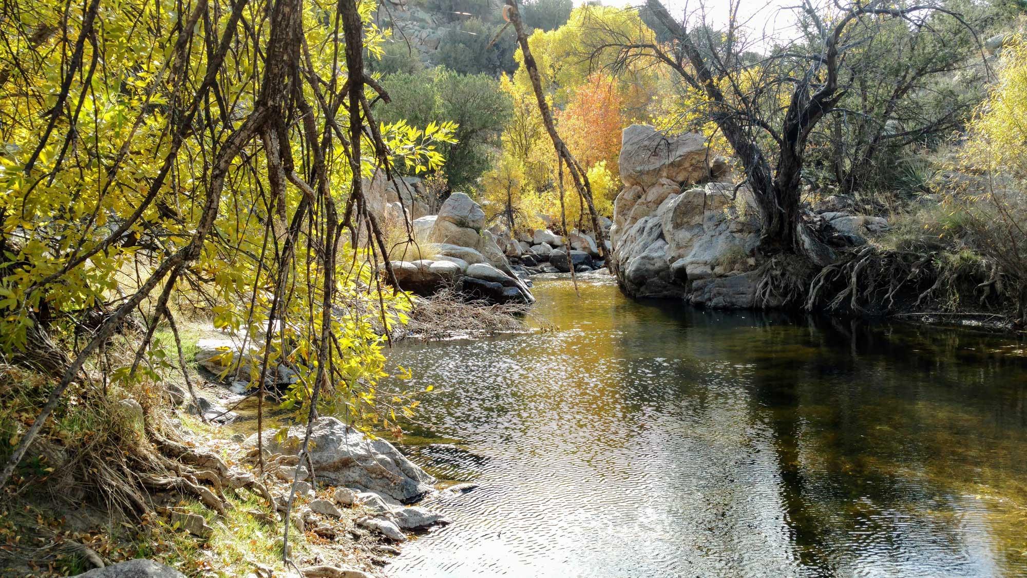 Beautiful Southern Arizona