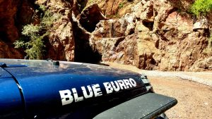 Blue Burro Goes to Dealership for Jeep Airbag Recalls