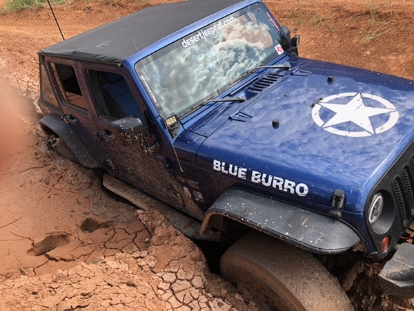 Off-Road Blue Burro